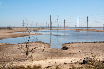 Pond in desert with power lines, clear sky, tree without leaves