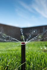Lawn Sprinkler Head Shallow Depth of Field