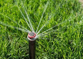 Automatic sprinkler spraying water onto green grass