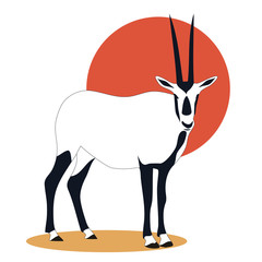 arabian _oryx_illustration