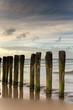 canvas print picture - Poteaux sur une plage à Calais