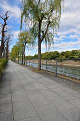 皇居前の遊歩道