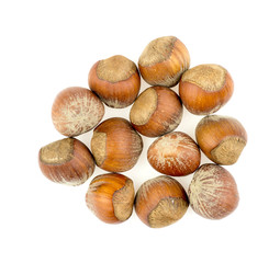 Pile of hazelnuts