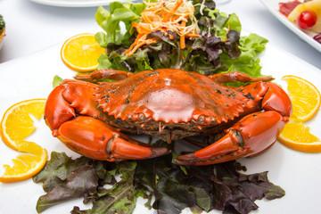 Singapore chili mud crab