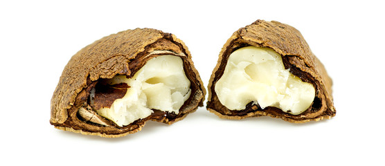 Half open brazil nut with shell and flesh