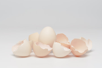 Egg with eggshells