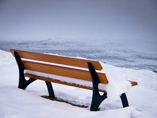 bench 51)