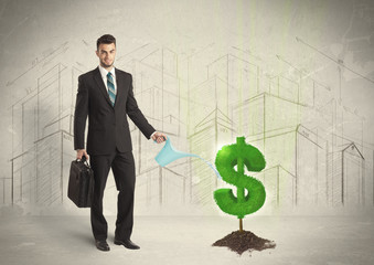 Business man poring water on dollar tree sign on city background