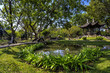 Chinese classical garden with pavilions and pond - 76191873