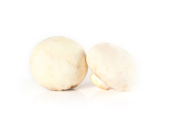 mushrooms and raw mushrooms isolated on white background