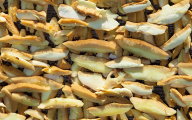 Boletus mushrooms sliced and stacked for drying