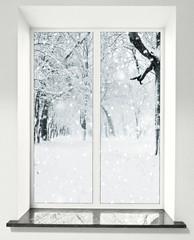 Winter in the window