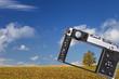 Leinwanddruck Bild - Fotografieren Baum