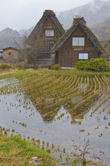 Countryside wood thatched house