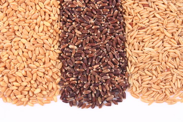 Wheat, oat kernel, oat rice