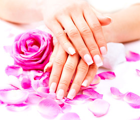 Hands spa. Beautiful female hands with pink rose flowers petals
