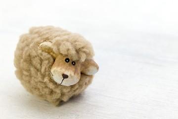 Schaf auf weißem Holzboden
