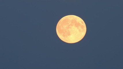 Tele shot of the supermoon