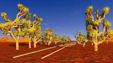 Joshua trees and railroad