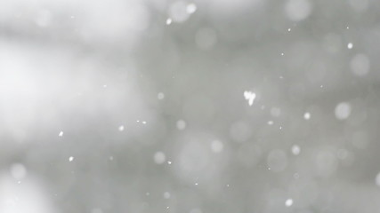 Snow Flurry / Drifting Snow