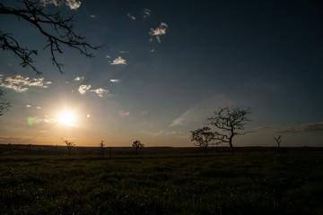 Sunset Cerrado