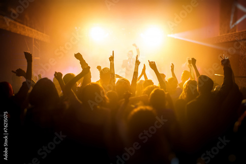 Group of people enjoying a concert - 76215075