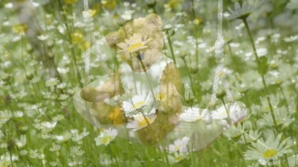 Margeriten mit Teddy auf einer Schaukel