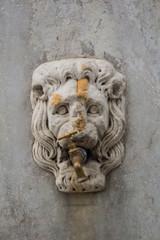 Fontanella pubblica, testa di leone scultura, rubinetto