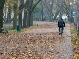 Man riding bicycle in park in autumn