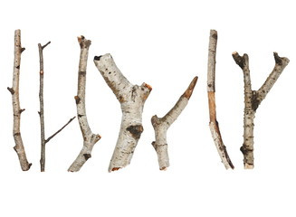 Twigs, set macro dry branches birch isolated on white