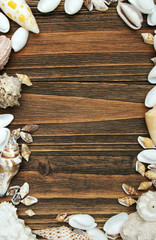Wood and shell background