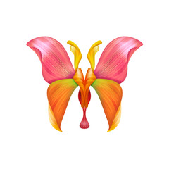 abstract petal butterfly illustration isolated on white