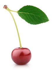 Sweet ripe cherry berry with leaf isolated on white