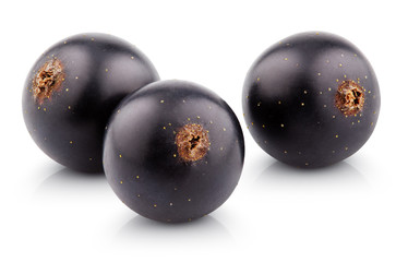 Black currant berry isolated on white with clipping path