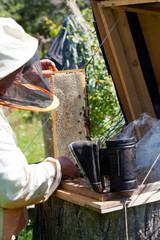 Beekeeper smokes bees from beehive smoke of bee smoker