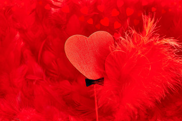 Valentines Day. Hearts red Couple on feathers. Love concept