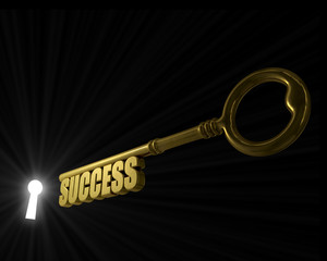 Key with word success pointed to the key hole