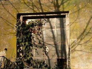 Vergilbtes Fenster einer Scheune auf dem Hofgut Richerode