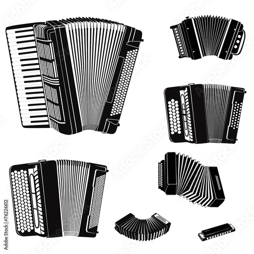 Music instruments set. Accordion family collection - 76226612