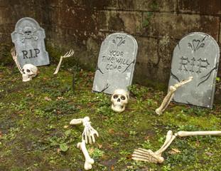 Skeletons awakening