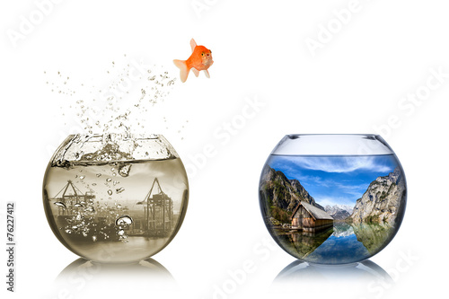 fish rethink concept - 76227412