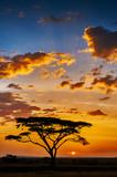 African sunset - Fine Art prints