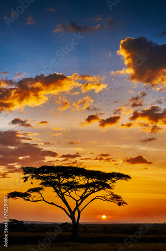 African sunset - 76229693