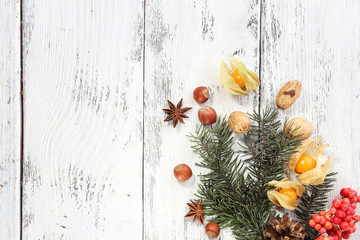 Christmas pine sprig with spices on color wooden background