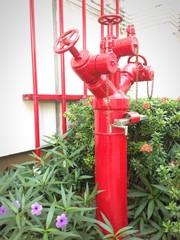 water plug