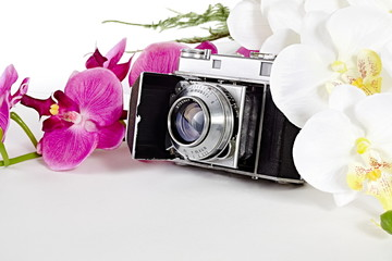 Vintage camera with Orchids