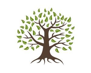 tree logo template v.2