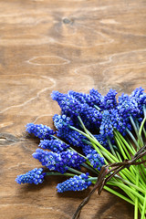 Bouquet of hyacinths on a board