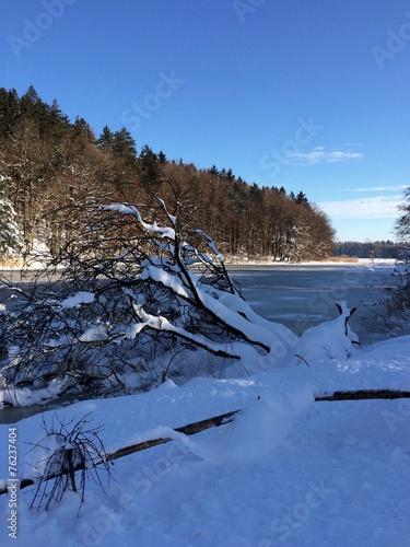 canvas print picture Winter am Sonderhamer Weiher