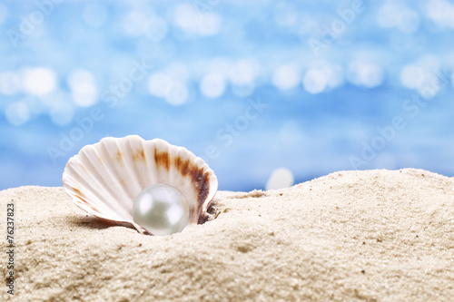 Pearl oyster - 76237823